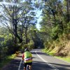 Moruya to Melbourne